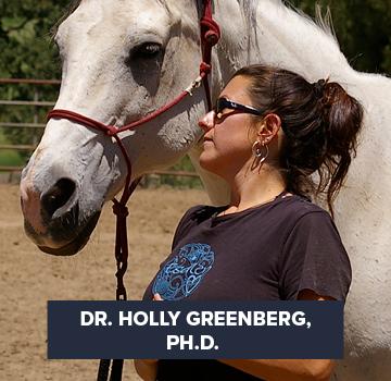 Dr. Holly Greenberg, Ph.D.